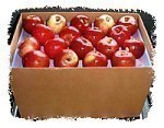 Honeycrisp Apple Bushel Case 64 or 72 Count Fancy 1 Box Per Month For 3 Months (risk of bruising)