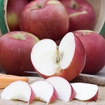 SnowSweet® Apple 18 Count Gift Box